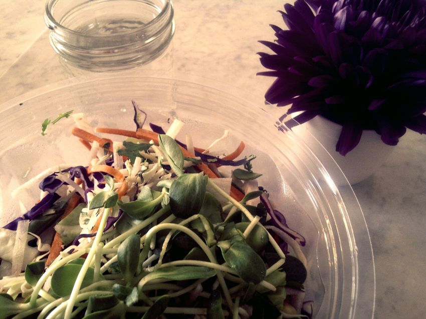 The entirely raw Asian Slaw at Belmonte Raw (yes, that rhymes) contains sprouted beans along with cabbage, carrot, jicama, daikon, green beans, and mint. It is topped with cashews, goji berries, and a peanut tamarind dressing.